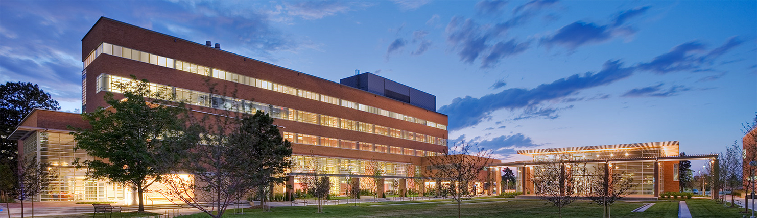 Education quad at night
