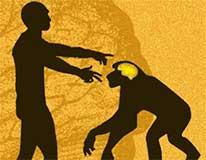 Human and Monkey Illustration