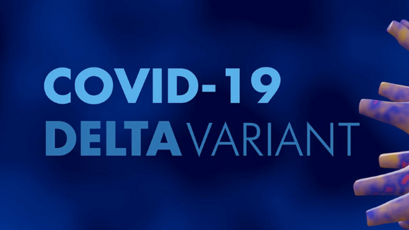 COVID Delta Variant graphic