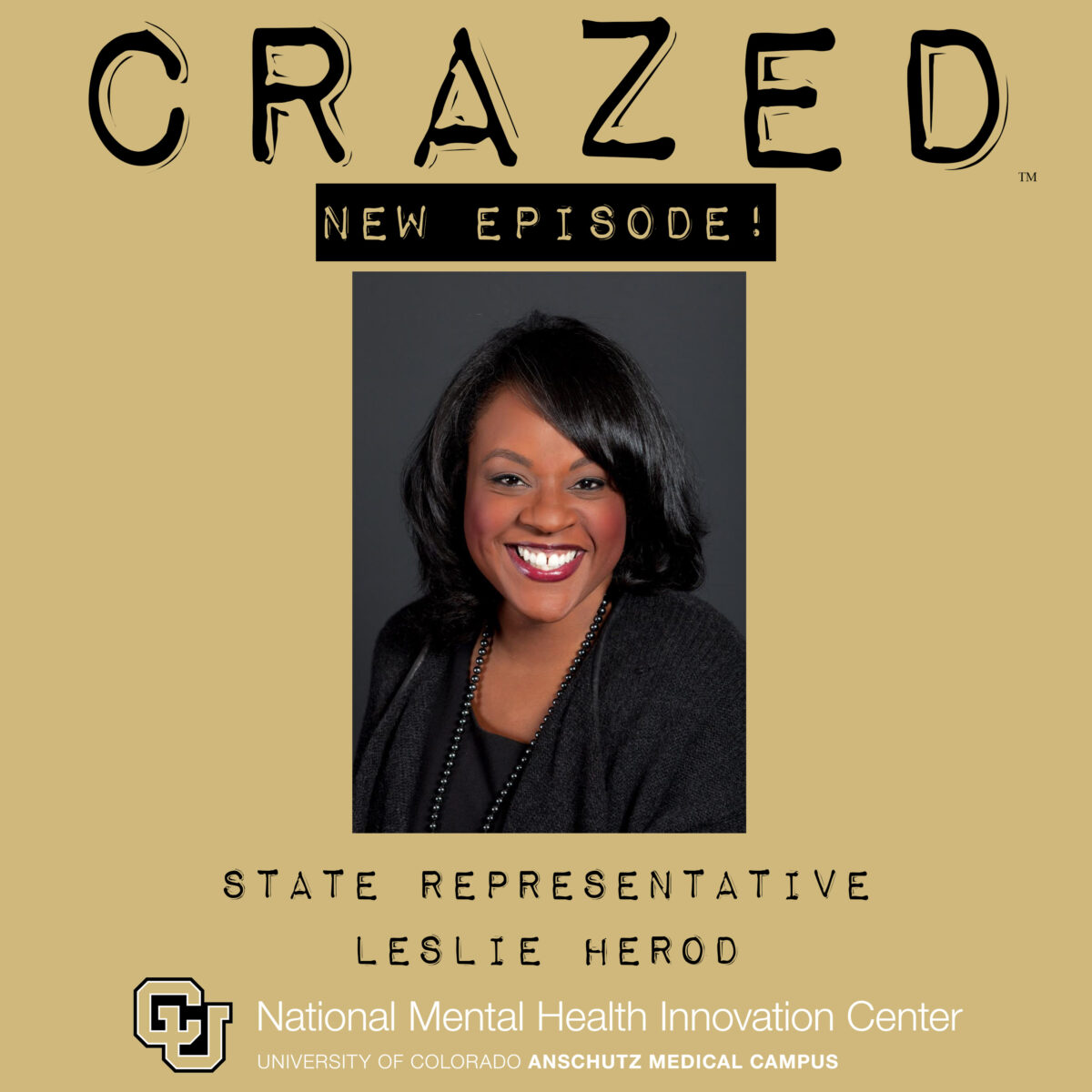 Podcast Episode with Leslie Herod