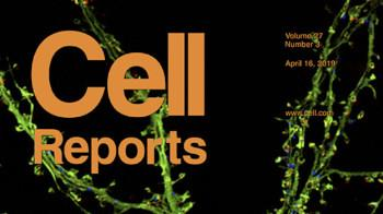 Cell Reports journal cover with neurons
